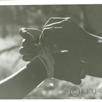 P301 2523.jpg