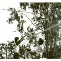 P33 2518.jpg