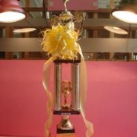 ถ้วยรางวัลชนะเลิศกีฬาสี สำนักวิทยบริการ<br />